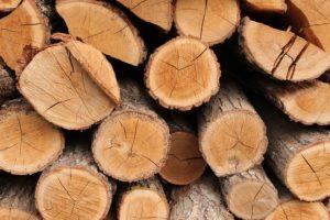 Schritt 1: Das richtige Holz